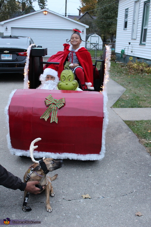 How the Grinch Stole Halloween Homemade Costume