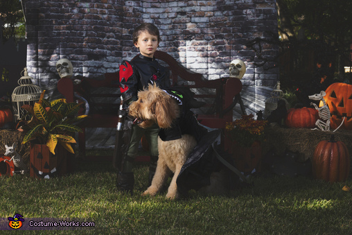 Hiccup and Toothless, How To Train Your Dragon Family Costume