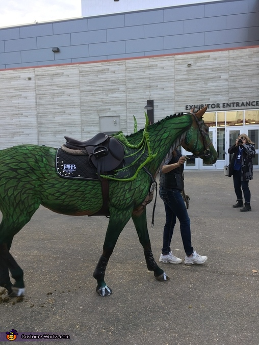 How to turn a Horse into a Dragon Homemade Costume