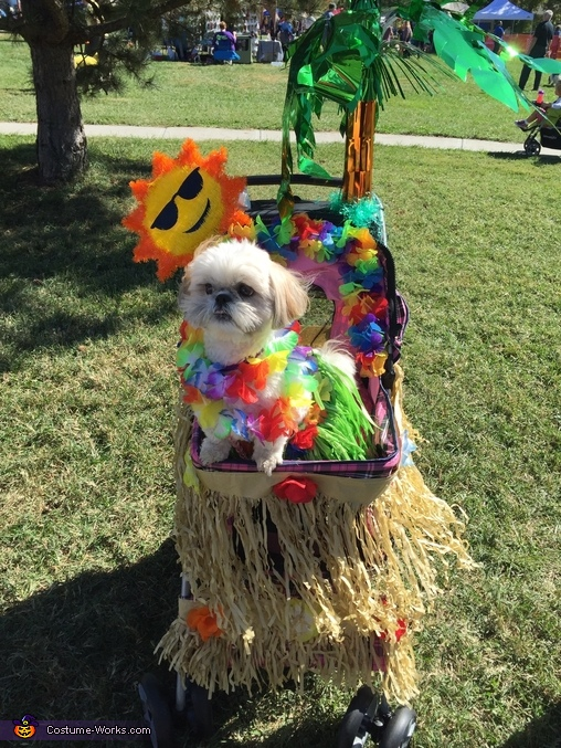 Hula Girl Dog's Costume