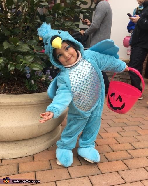 Humming Bird Costume