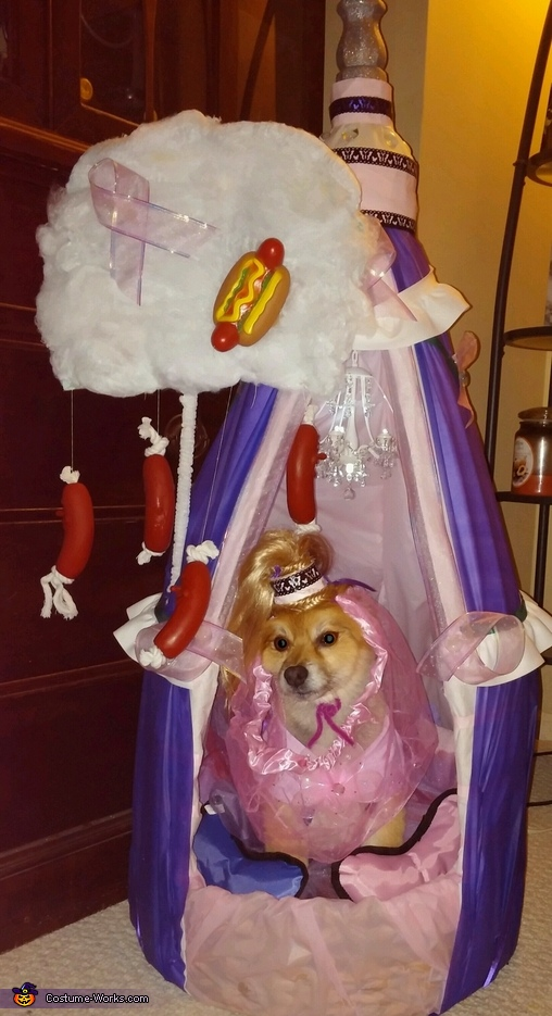 I Dream of Weenies Dog Costume