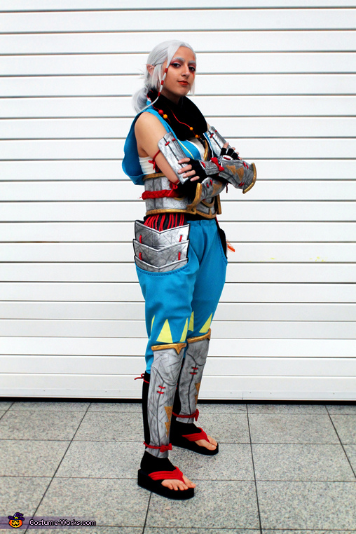 Impa From Hyrule Warriors Costume Photo 3 8