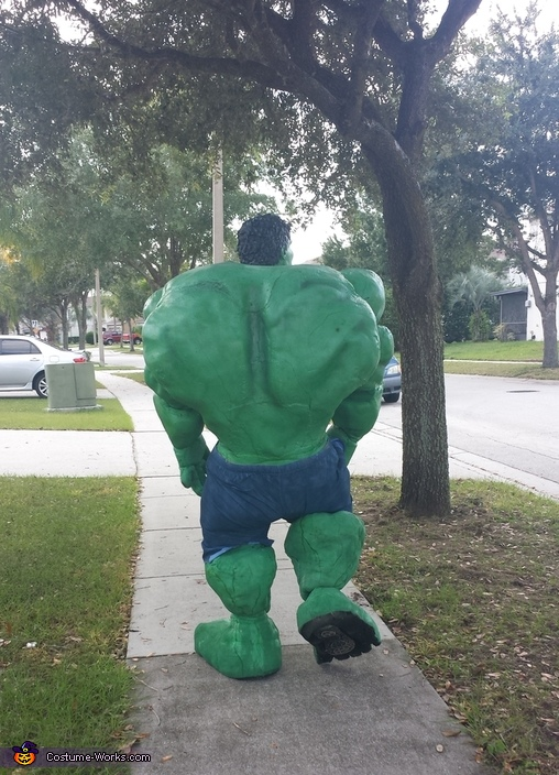 Incredible Hulk Homemade Costume