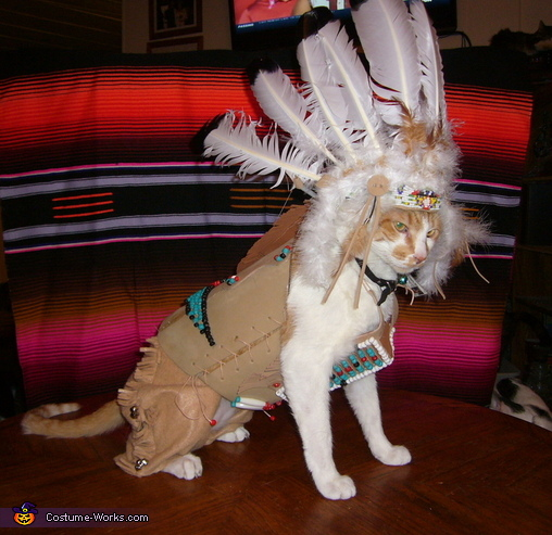 Indian Chief Cat Costume