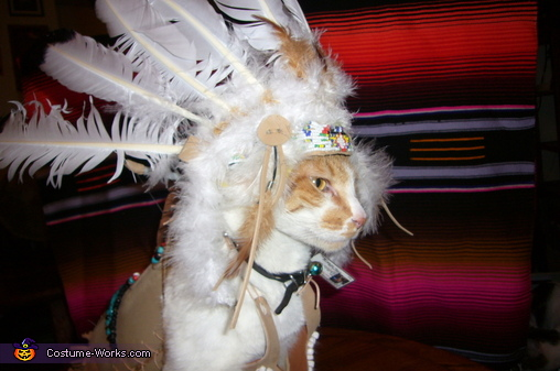 Indian Chief Homemade Cat Costume