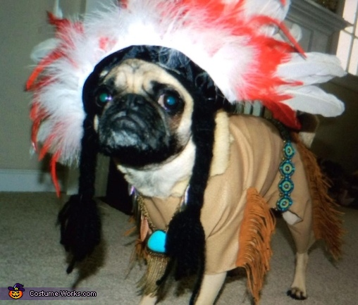 Oliver the Indian Costume