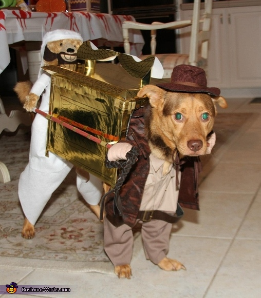 Indiana Jones and the Raiders of the Lost Ark Costume