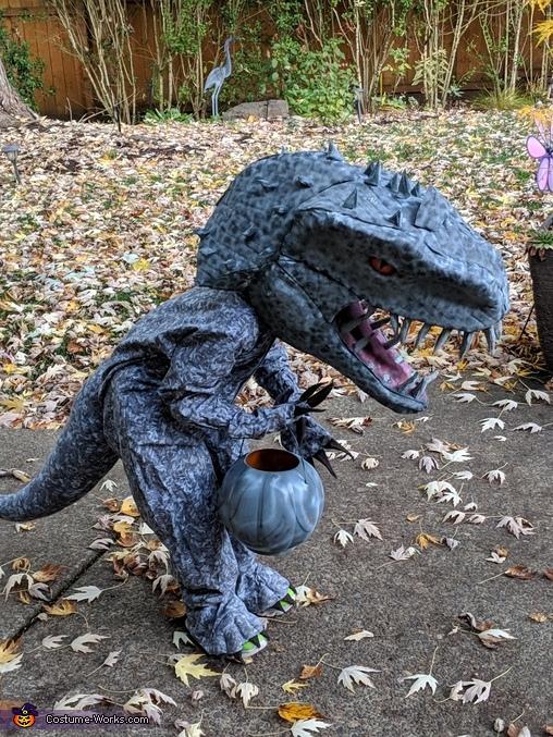 Indominus Rex, Indominus Rex and Velociraptor Costume