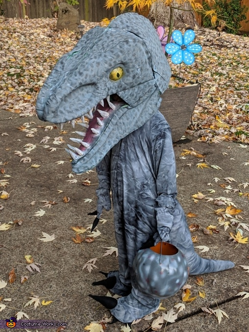 Velociraptor 'Blue', Indominus Rex and Velociraptor Costume
