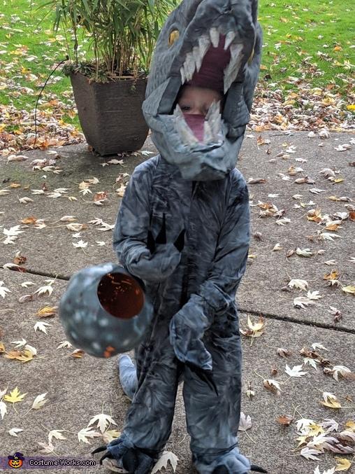 Roar!, Indominus Rex and Velociraptor Costume