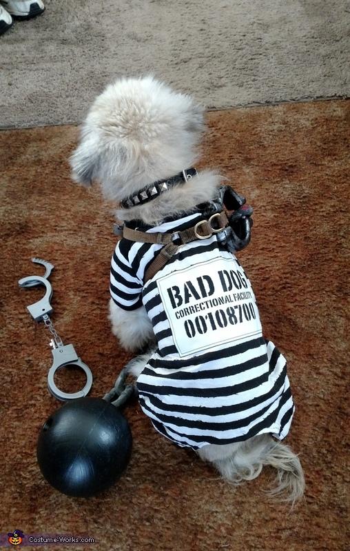 Inmate Prisoner Costume