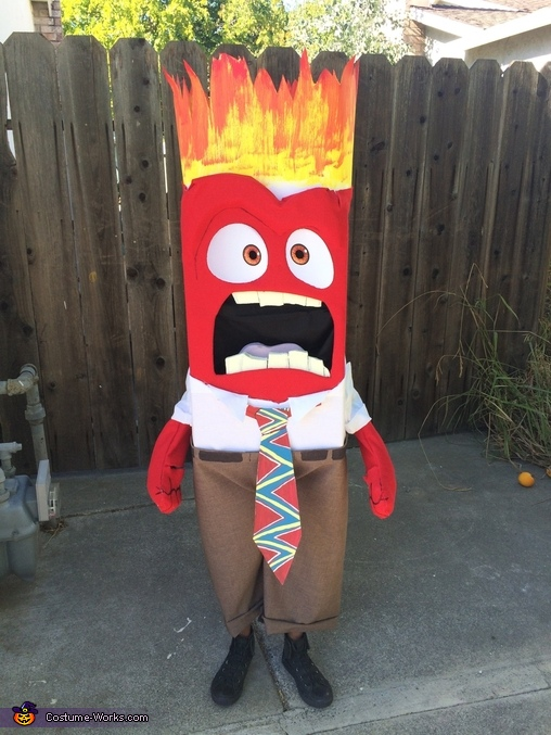 Anger, Inside Out Family Costume