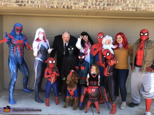 Into the Spiderverse Costume
