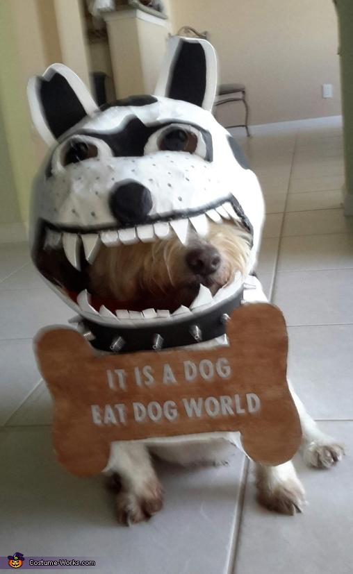 It's a Dog eat Dog World Costume
