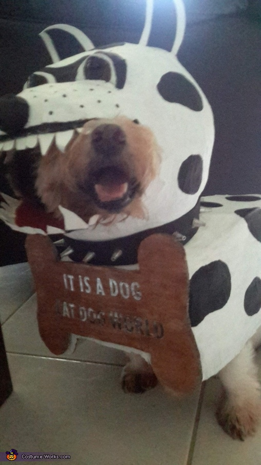 It's a dog eat dog world Homemade Costume