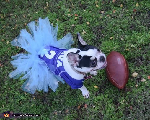 Most Valuable Pup!, It's Football Season! Costume