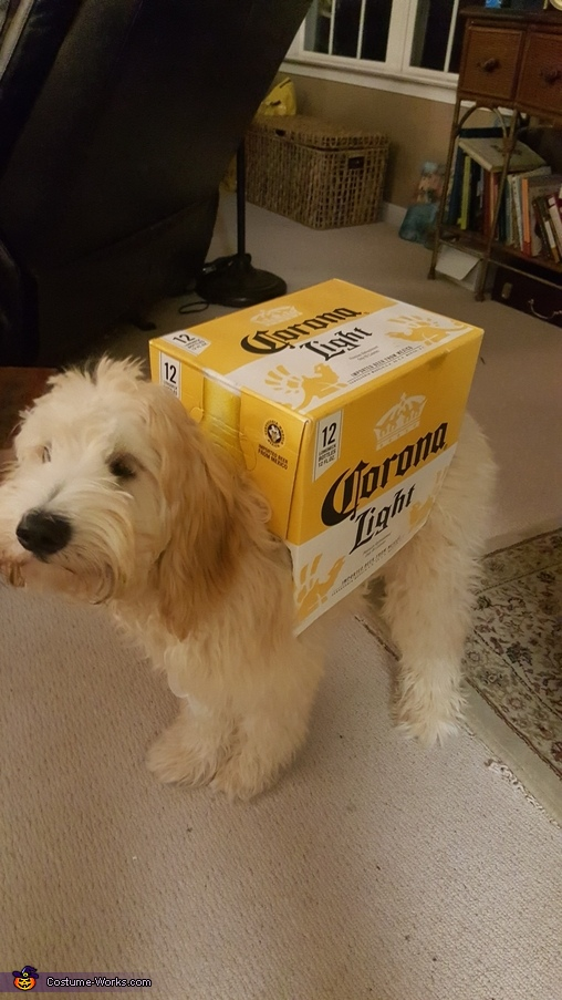 I had to find the perfect box, It's Happy Hour! Costume