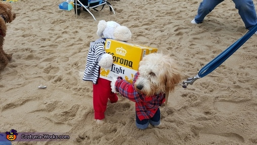 Dog Carrying a Box of Corona Beer, It's Happy Hour! Costume
