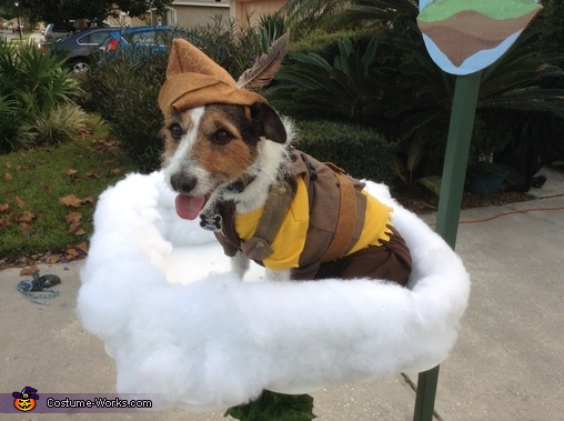 Jack and the Beanstalk Dog Homemade Costume