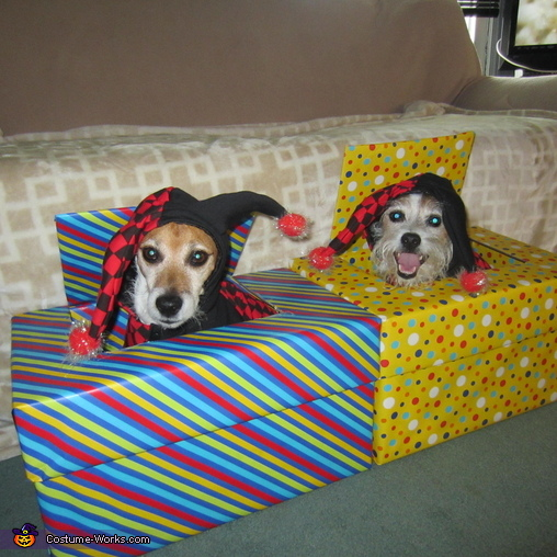 Jacks in a Box Costume & Jack in a Box Dogs Costume