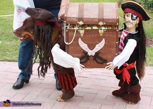 Jack Sparrow and his Pirate Helper - Homemade costumes for pets