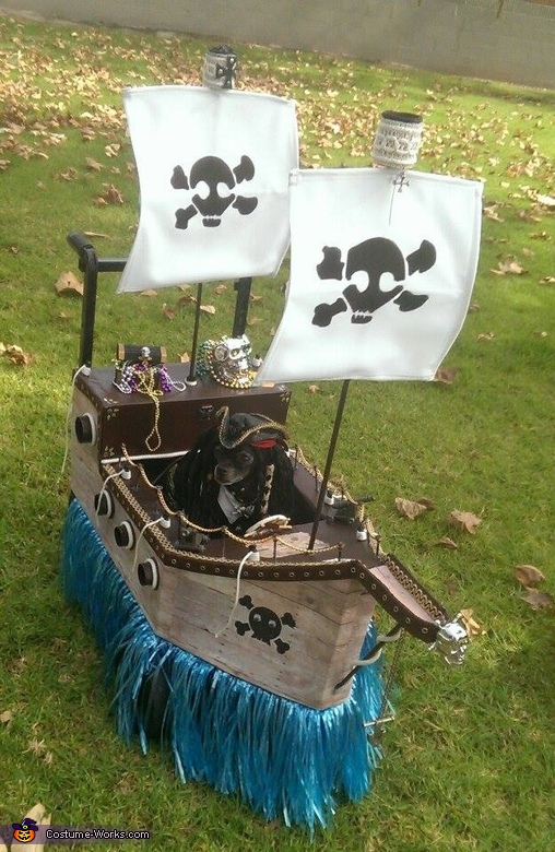 Jack Sparrow and the Pirate Ship Homemade Costume