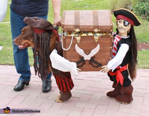 Jack Sparrow with his Pirate Helper Costume