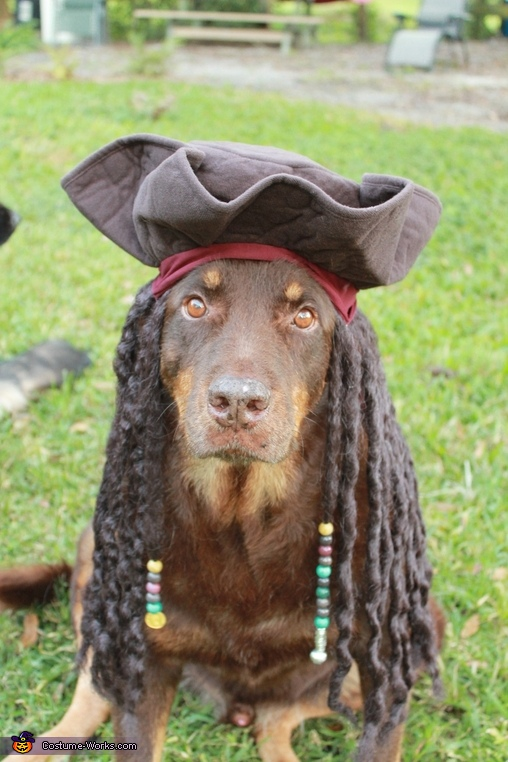 Bob as Jack Sparrow, Jack Sparrow with his Pirate Helper Costume