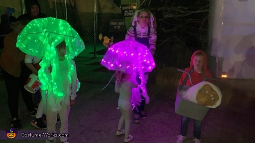 Jellyfish Homemade Costume