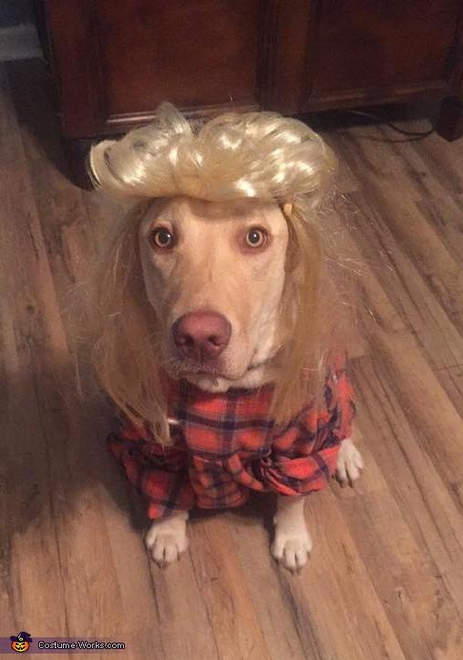 Joe Dirt Dog Homemade Costume