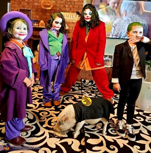 Jokes on you Batpig! Costume