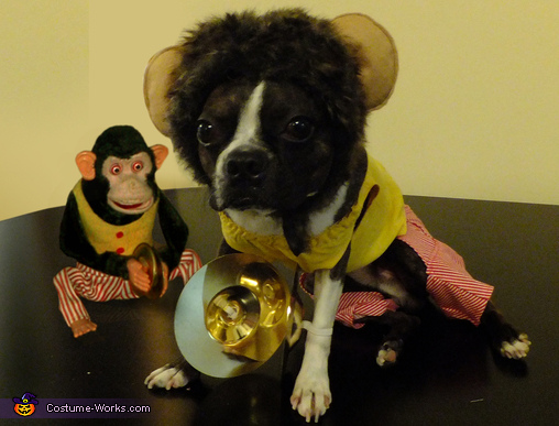 Jolly Chimp Costume