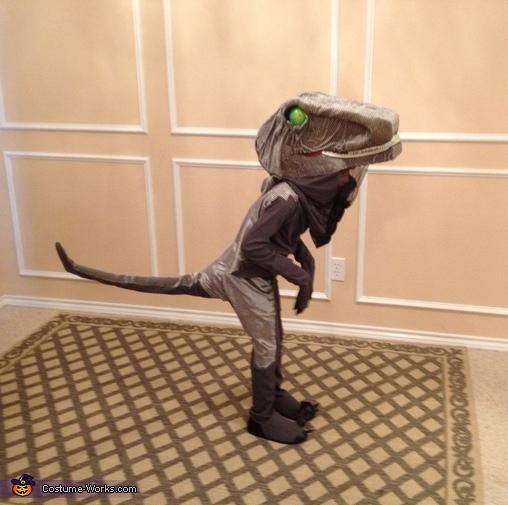 Delta, Jurassic World Dinosaurs Costume