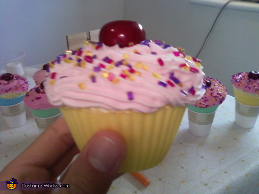 Side of Katy Cupcake, Katy Perry California Gurls Costume