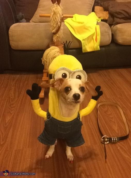 Minion Kevin , Kevin Minion Costume