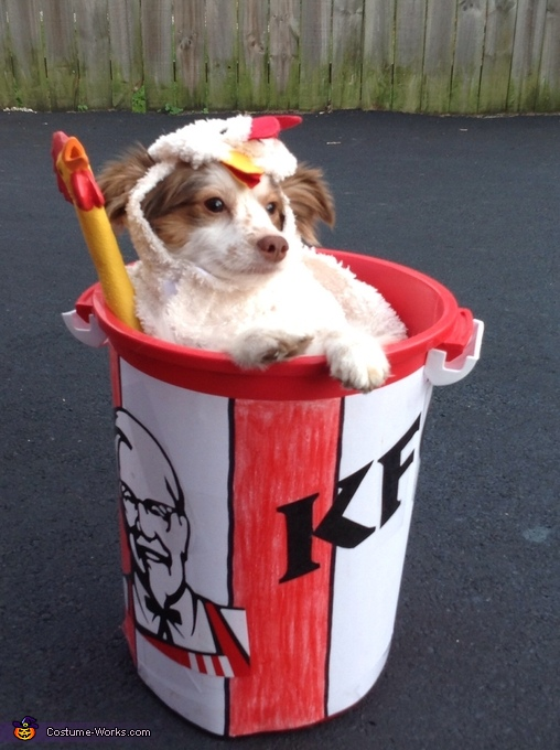 kfc_chicken_bucket1.jpg