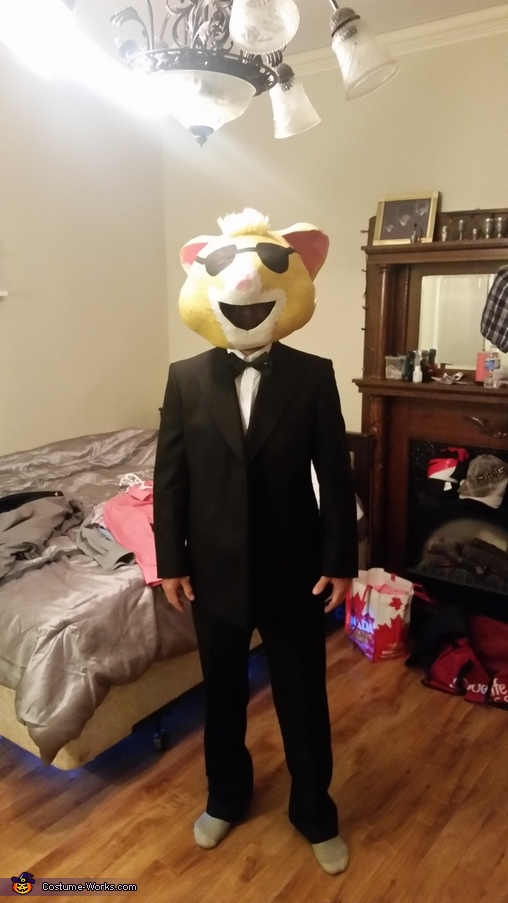 all dressed up, Kia Soul Hamsters Costume
