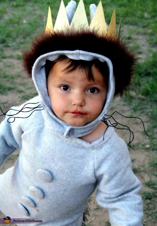 King of All Wild Things Costume