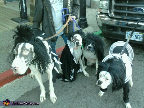 KISS - Homemade costumes for pets