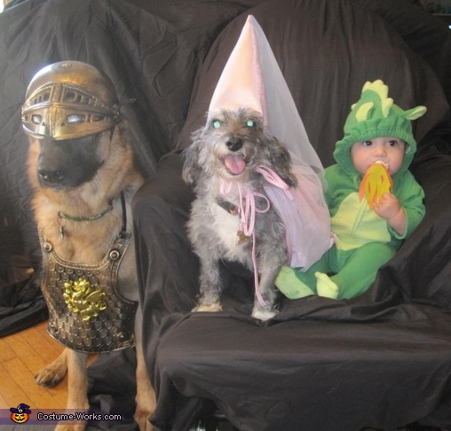 The Knight, The Princess and The Dragon Costume