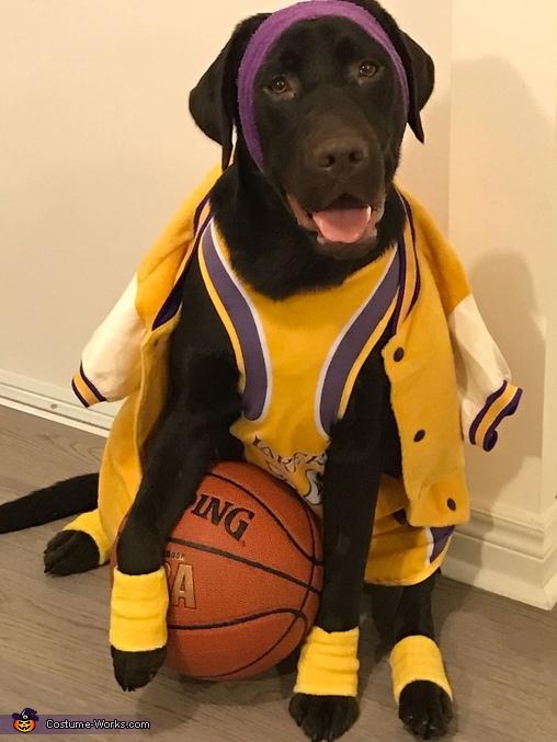 Kobe Bryant Dog Costume