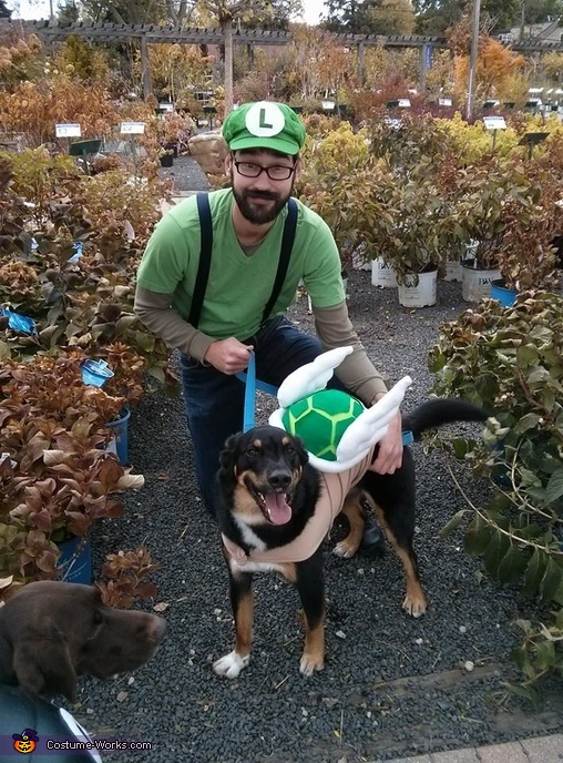 Mario Brothers: Koopa Troopa and Chain Chomp Dog Costume