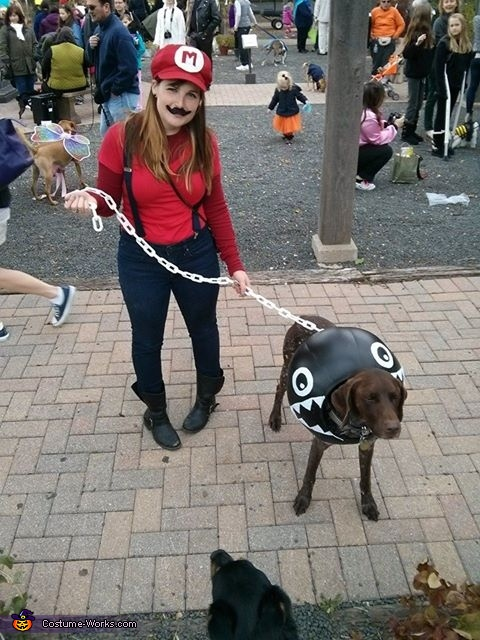 Laser the Chain Chomp, Mario Brothers: Koopa Troopa and Chain Chomp Dog Costume