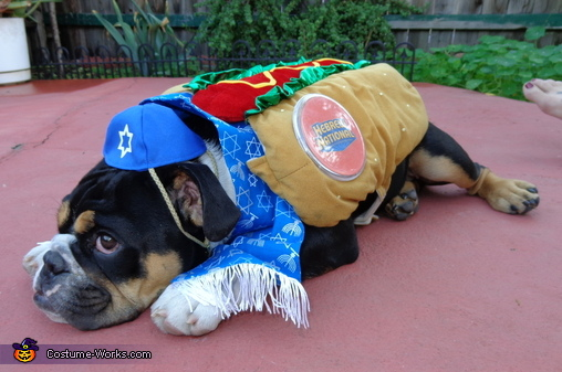You talkin' to me???, Kosher Dog Costume