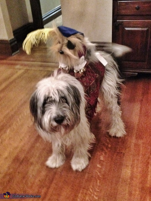 Sir Didymus and his trusty steed, Labyrinth Family Costume