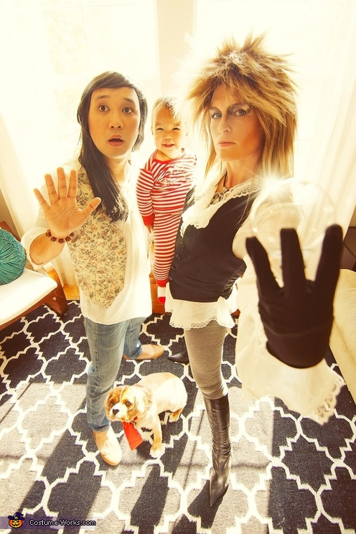 Labyrinth Family Costumes