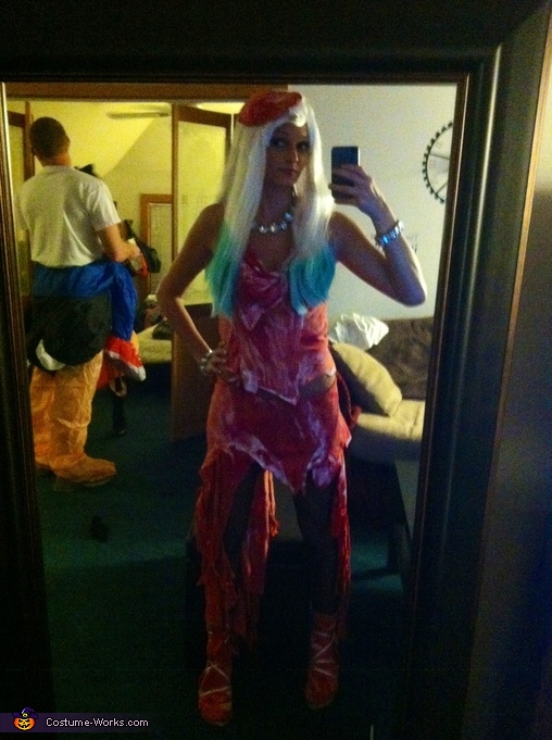 Mirror pose, Lady Gaga Meat Dress Costume