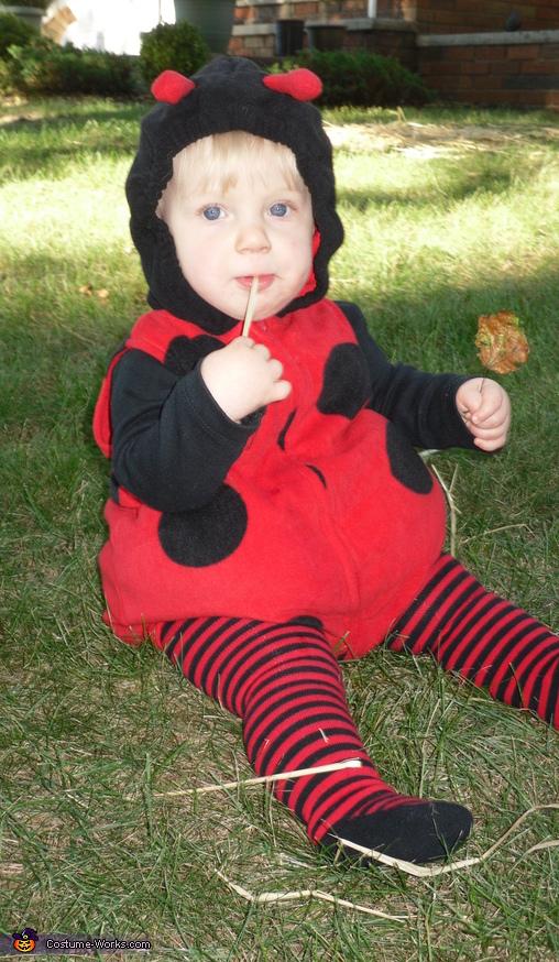 Kaylee Bug Baby Ladybug Costume