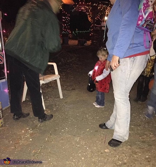 trick-or-treating at wildlife prairie park, Ladybug Baby Costume